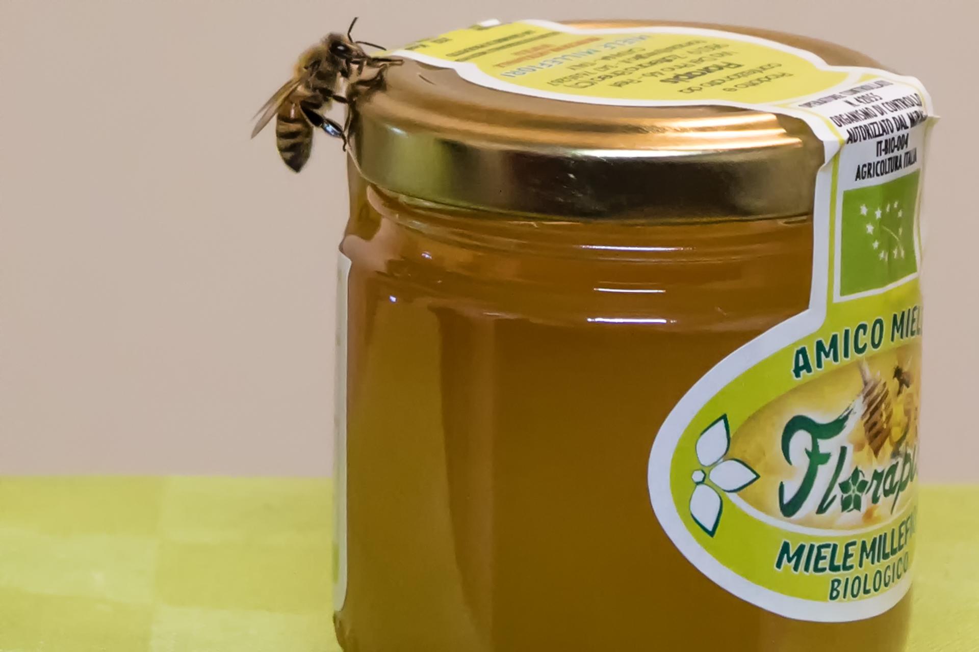 passione per le api