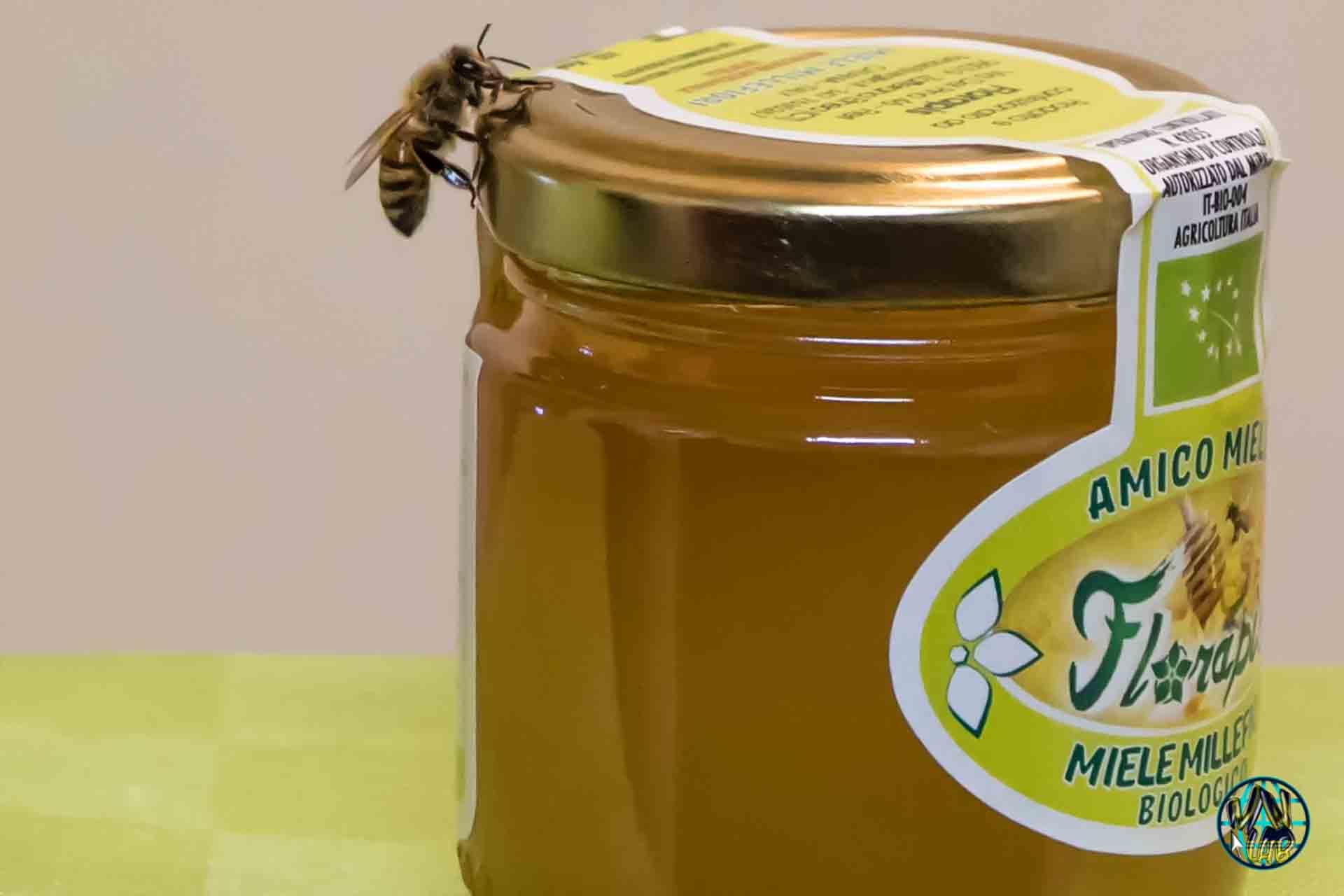 vendita di miele biologico siciliano - Florapis